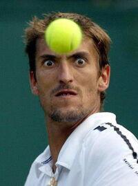 Pilka tenisowa.jpg