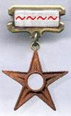Registered editor badge with tildes