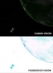 Yad vision