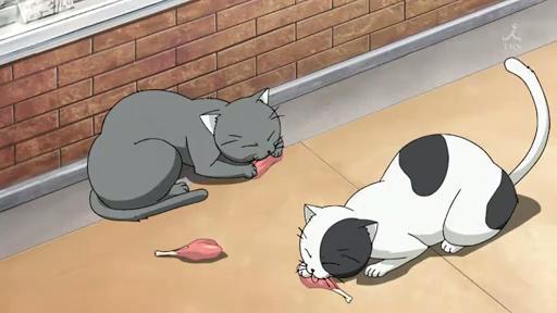 File:Nyan Koi - 01-2013-01-22 23-51-58.jpg