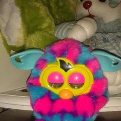 Pink/Blue hearts Furby Boom, owned by MagicMasterBilly (AKA FurbyManiac)