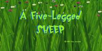 A Five-Legged Sheep