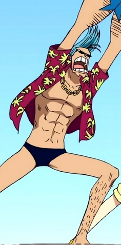 File:Franky's Most Common Outfit.png