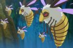 Sutchies Swarm