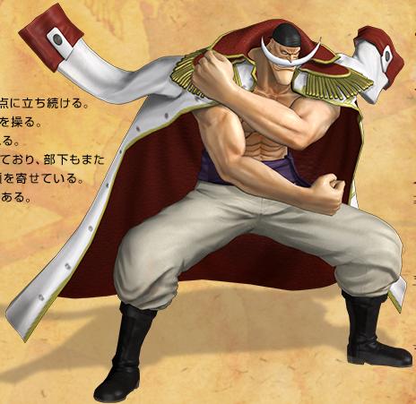 File:Newgate Pirate Warriors 2.png