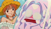 Nami Captures Honey Queen.png