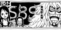 SBS Volume 48