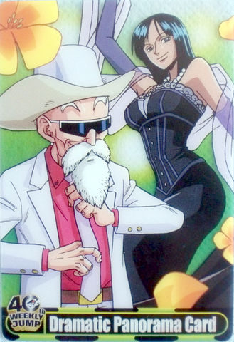 File:Roshi Robin Carddass.png