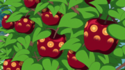 Incomplete SMILE Fruits.png