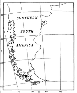 Location Americovibone lanfrancoae h-c-1991