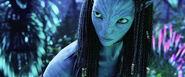 Avatar 026
