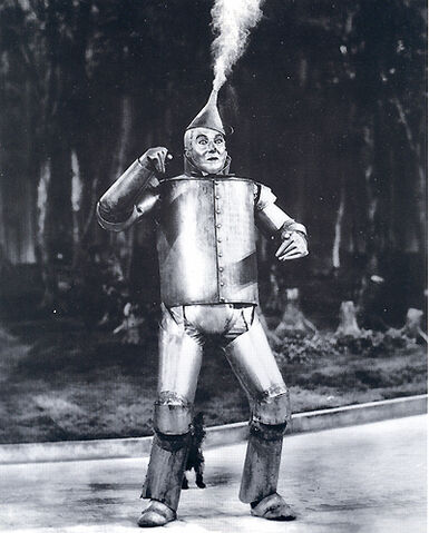 File:Pic07tin-man.jpg