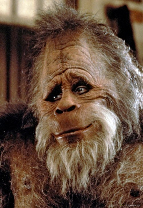 Harry Henderson | Heroes Wiki | FANDOM powered by WikiaKevin Peter Hall Harry And The Hendersons