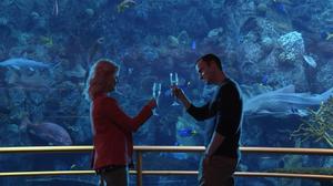 Indianapolis Aquarium