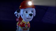 Pups save a jake 1