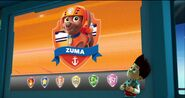 Zuma On Lookout Screen