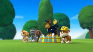 Circus Pup-Formers (Hahaha!)