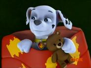 Marshall and his cute widdle teddy bear