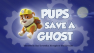 Pups Save a Ghost (HD)