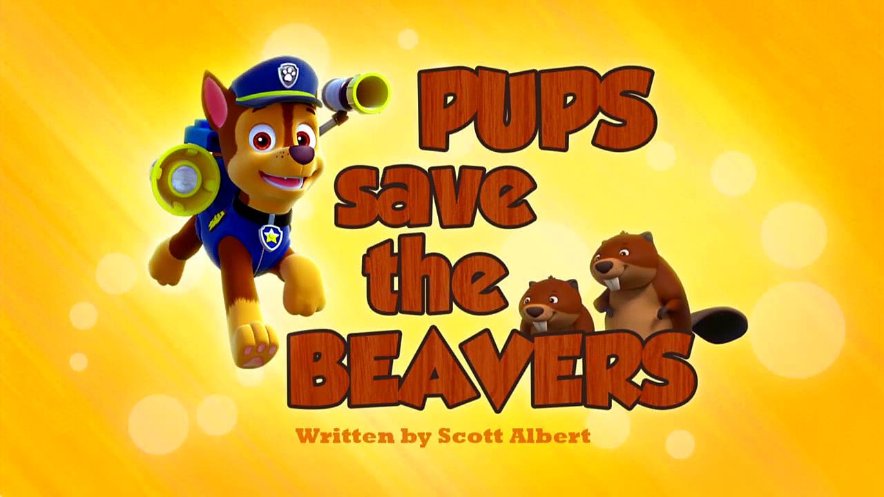 pups save the beavers paw patrol wiki fandom powered