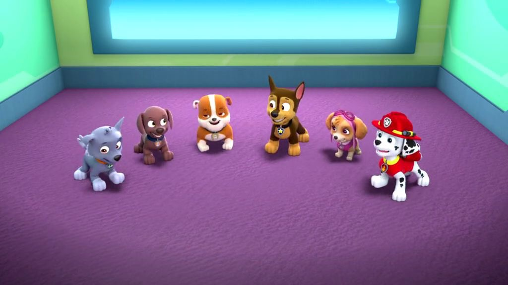 image 8ae388d0 40c7 4f73 a659 75f4a75addbd jpg paw patrol wiki fandom powered by wikia. Black Bedroom Furniture Sets. Home Design Ideas