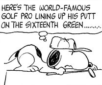 World Famous Golf Pro