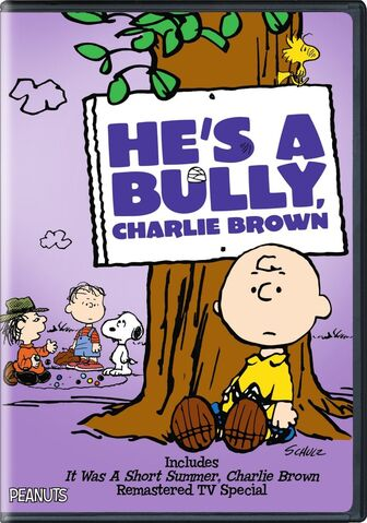 File:He's a Bully, Charlie Brown DVD.jpg