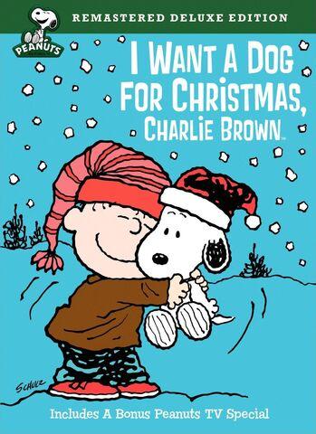 File:I Want a Dog for Christmas, Charlie Brown 2009 DVD.jpg