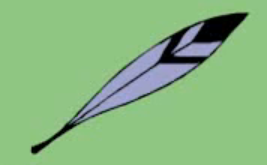 Hoot's feather