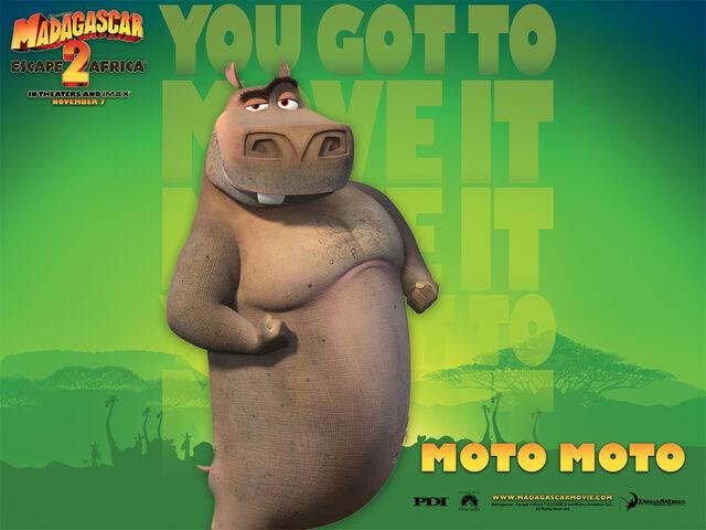 File:Moto Moto.jpg