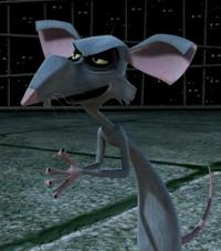File:Rat1.jpg