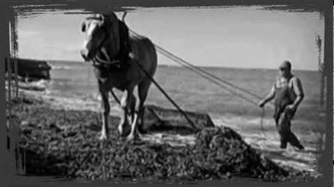 Sea Wrack by Hamilton Harty ♬ Russell Malcolm ❧ Irish Ballad ❧