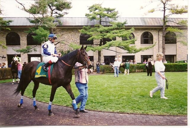 File:Keeneland-Parade-to-Post-race-horses-4285862-1202-812.jpg