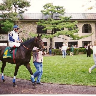 at Keeneland Racetrack