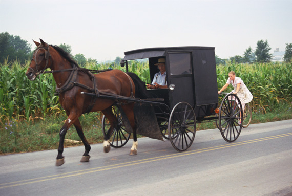 File:Amish horse and buggy.jpg