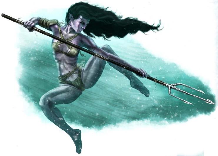 Image result for pathfinder Aquatic Elf