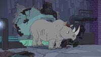 Agent Rhinoceros