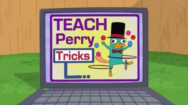 File:Teach Perry tricks.jpg
