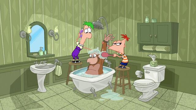 File:Giving a Monkey a Shower.jpg