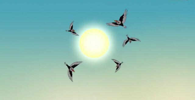 File:Vultures flying overhead.jpg