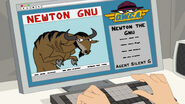 322a - Newton Gnu Identity