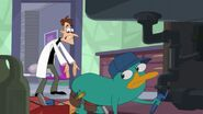 Perry The Platypus Plumber