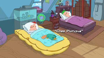 Chez Platypus title card