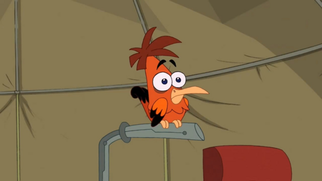 File:Unnamed Heinz Doofenshmirtz look-a-like bird.png