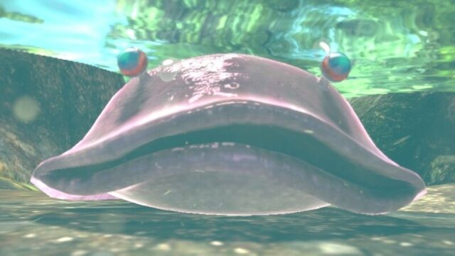 File:ToadyBloysterFrontal-Pikmin3.jpg