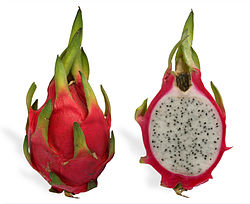 File:250px-Pitaya cross section ed2.jpg