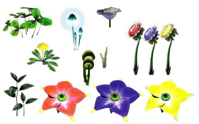 File:Pikmin 1 Plants.jpg