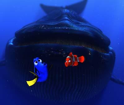 File:Fish7.jpg