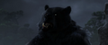 Brave-Bear5.png