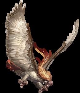 Pidgeot Arvalis